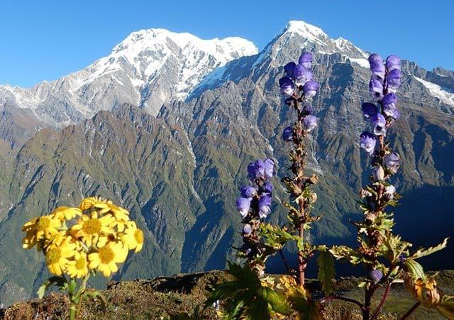 Annapurna-South-from-Mardi-Himal-Base-Camp