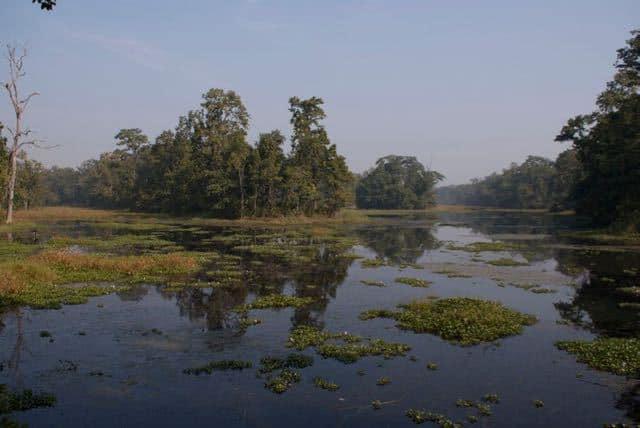 Beautiful-morning-in-Chitwan1