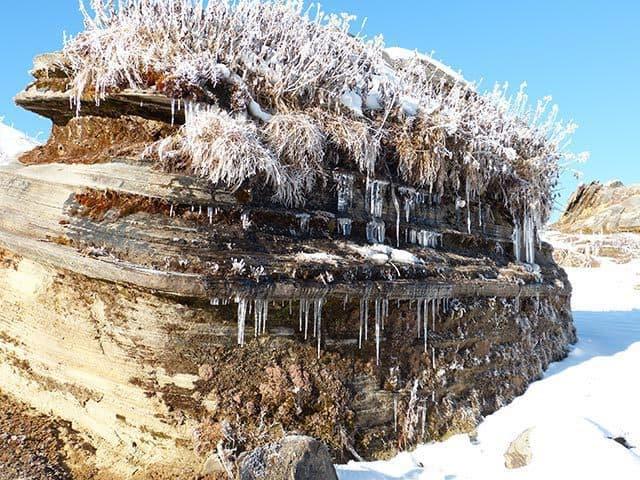 Chorten-in-Snow