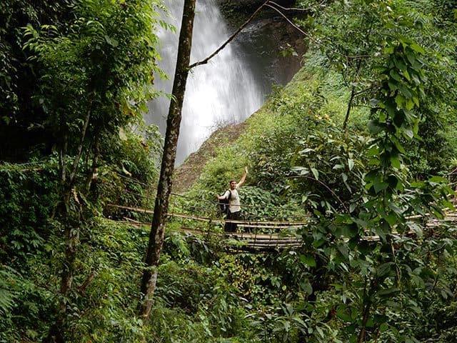 Forest-Trek-Mardi-Himal