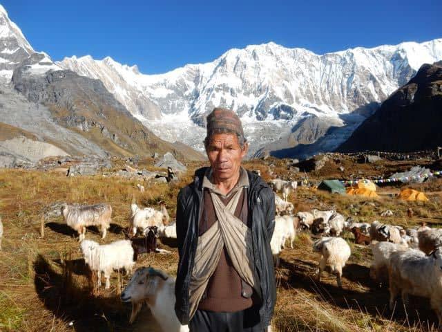 Goat-Hearder-Annapurna-South-Face