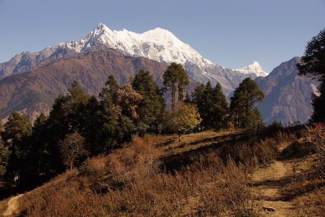 Great view of Langtang Lirung