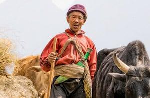 Farmer-Nepal