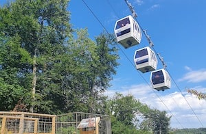 Cable car going up to heights of Abraham