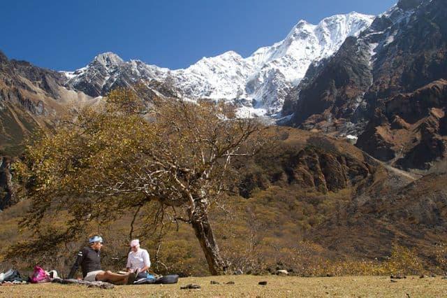 High_Himalayan_pasture_22
