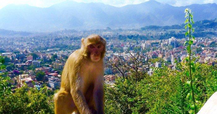 Kathmandu-Valleu-City-View-UNESCO