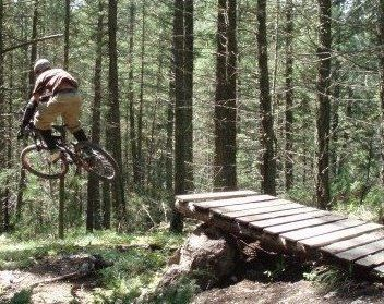 Mountain-Biking-Dalby-Forest_21