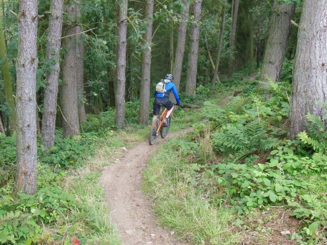 Mountain_biking_dalby_forest_8