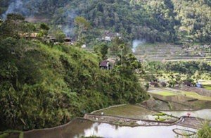 Nepalese countryside