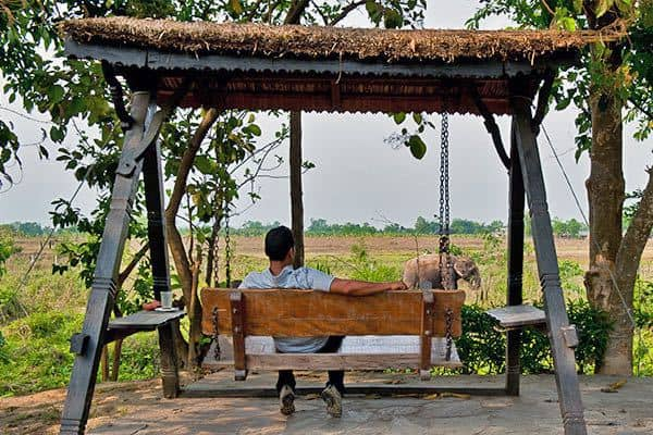 Swing-Seat-Safari