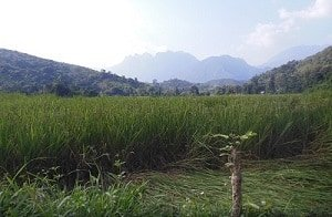 Views-Trekking-in-Laos