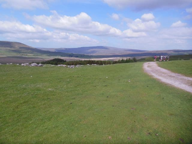 Whernside_in_the_distance_29